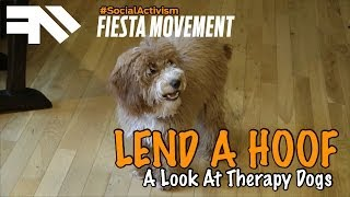Therapy Dogs & Puppy Training - Social Activism - Fiesta Movement - Andru Edwards