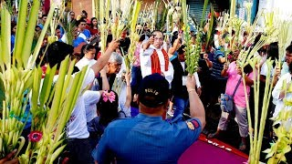 Catholic faithful mark Palm Sunday