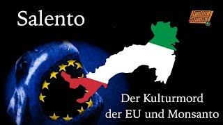Salento - Der Kulturmord der EU und Monsanto