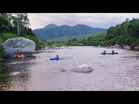 Bom macleay river kempsey