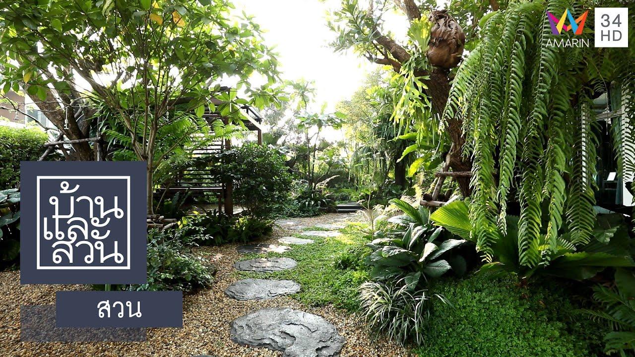 บ้านและสวน | สวน | เส้นสายธรรมชาติ