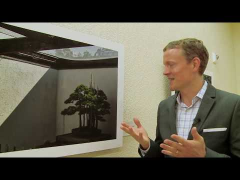 The art of Bonsai- Channel News Asia