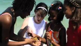 Little york New York Consumer Credit Counseling call 1-800-254…