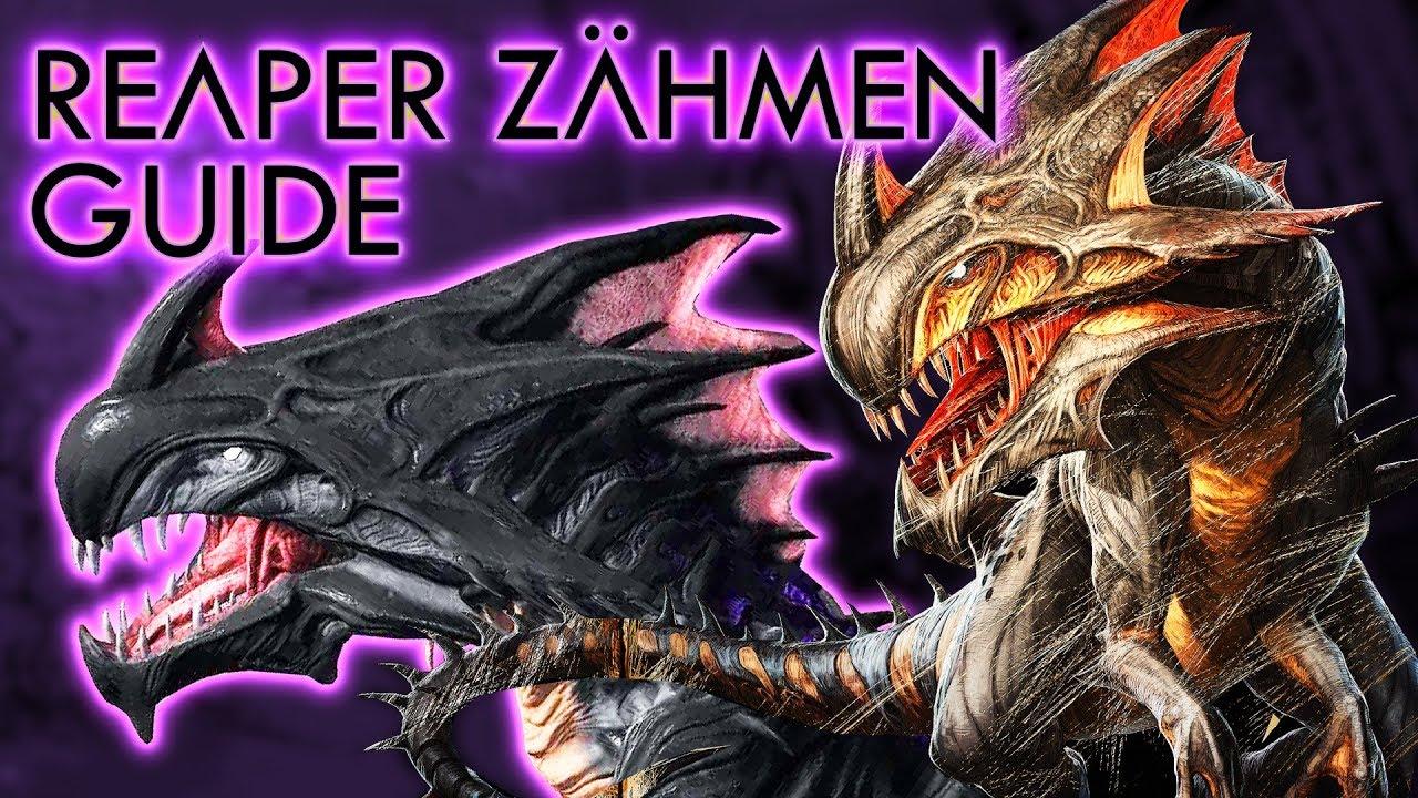 Reaper Deutsch