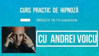 Curs Andrei Voicu