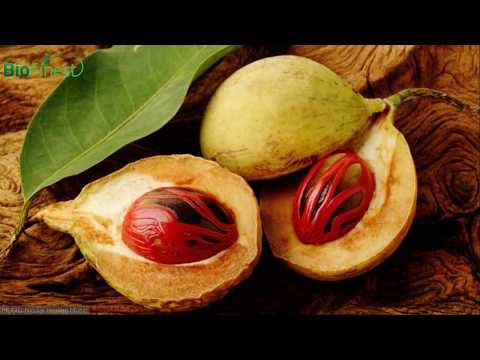7-magical-health-benefits-of-nutmeg-essential-oil