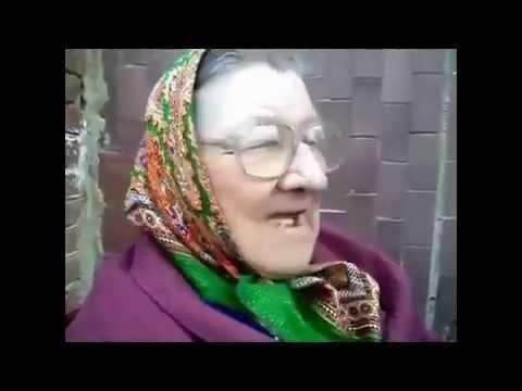 ссущая бабка и срущий кот