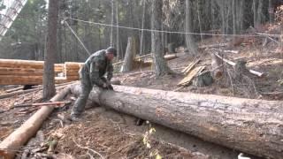Off Grid Log Cabin Build - Moving logs