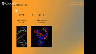Astronomy on Tap - Origin Of Life (Partial Talk before Internet Cut out) by Zan Peeters