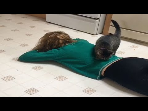 Cat Comforts Owner When She Cries