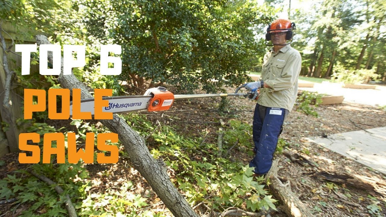 Best Pole Saw in 2019 - Top 6 Pole Saws Review