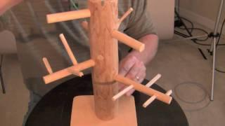How to Bonsai - Basic Wiring Technique
