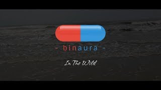 Gambar cover Binaura - In The Wild | Music Video | Official | 2018 | HD