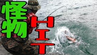 釣った魚に巨大魚が飛びついてきた【衝撃映像】【釣り三昧の旅 4話】
