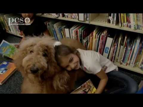 Healing Paws Animal Therapy visits Leila Davis Elementary School