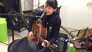 白波多カミン (2015年4月19日収録)仙台 アコースティック・ライブ @ギ...