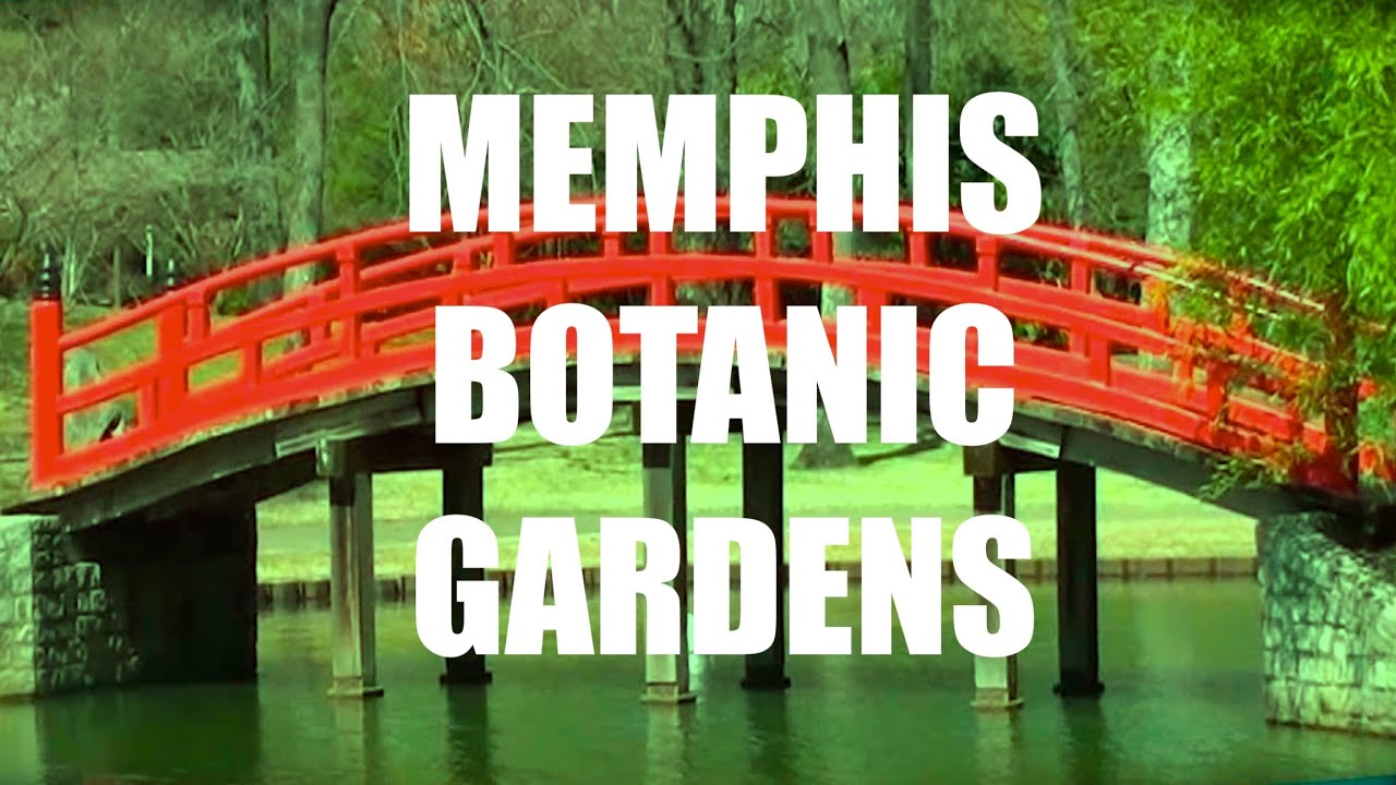 Walking Through Memphis Botanic Gardens