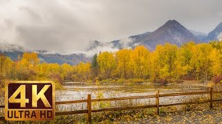 """Discover vibrant fall colors of washington state together with http://www.beautifulwashington.com and the fifth episode """"beautiful washington"""" in superb 4..."""