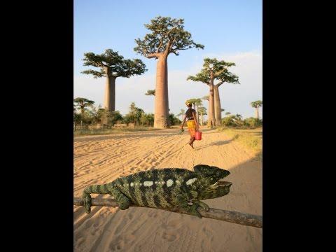 My Madagascar Travel Video