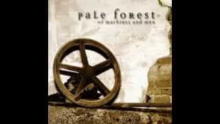 Watch Pale Forest Mooncycle video