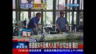 0919-又正主播專題~釣蝦界不傳之祕大公開 [中天新聞]