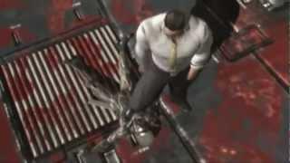 Metal Gear Rising: Revengeance - FINAL BOSS FIGHT -  [HD] (XBOX360/PS3/PC)