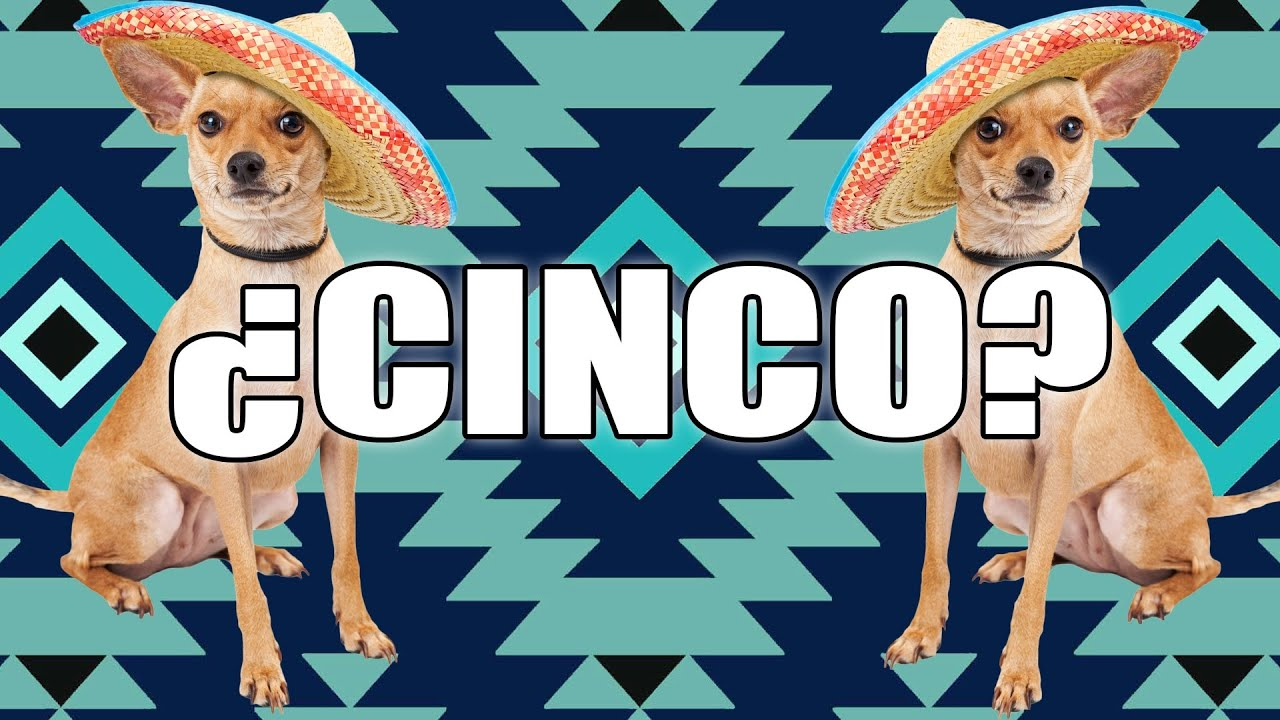 Uncategorized 5 De Mayo Facts facts you didnt know about cinco de mayo youtube