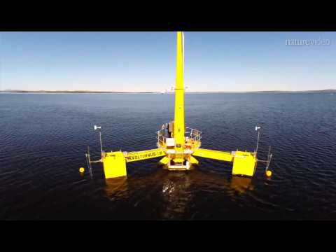 Renewable energy: Wind power tests the waters