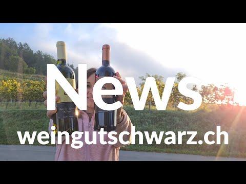 Herbst Degustation | Weingut Schwarz News Herbst 2021