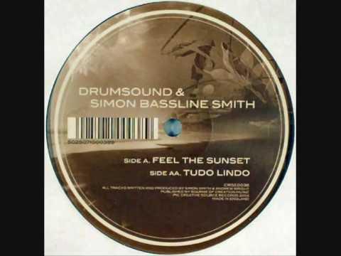 Drumsound & Simon Bassline Smith - Tudo Lindo