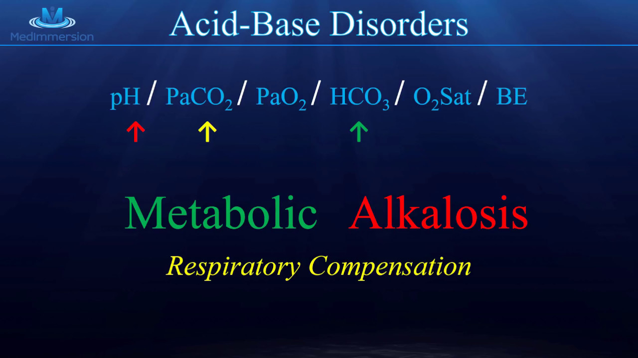 Understand The Arterial Blood Gas  U0026quot Abg U0026quot   Awesome