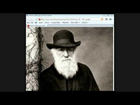 THE BIG BANG AND STELLAR EVOLUTION by Jason Burns