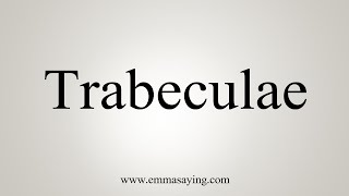 How To Say Trabeculae