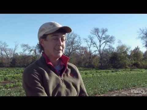 Farmshare Austin | Lorig Hawkins