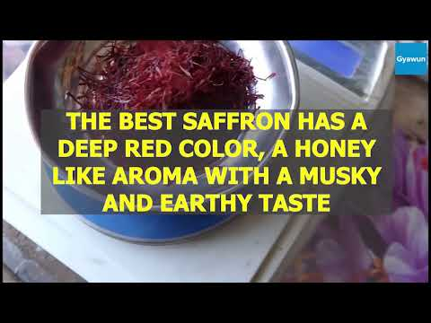 Gyawun Shop Kashmir Saffron/Kesar