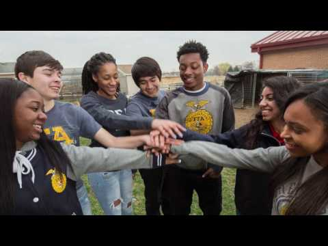 Diversity and Inclusion through FFA