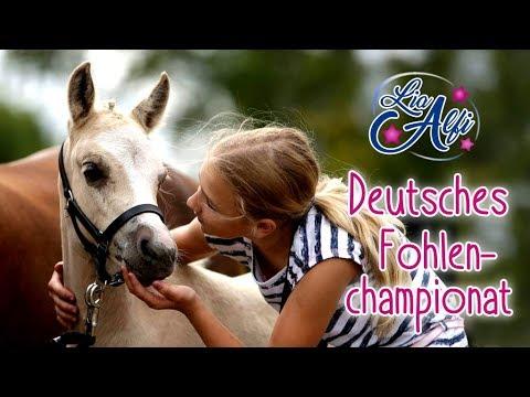 Lia & Alfi - Deutsches Fohlenchampionat 2017 - FMA