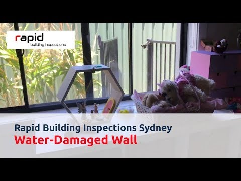 Rapid Building Inspections Sydney - Water-Damaged Wall