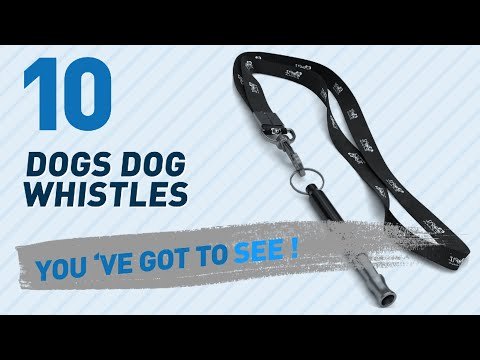 top-10-dogs-dog-whistles-products-//-pets-lover-channel