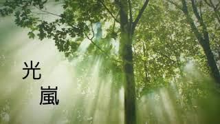 【嵐】光【nijiniji】歌ってみた