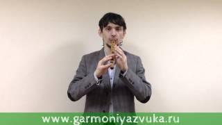 Первый ВИДЕО УРОК по игре на флейте Сопель в Ре