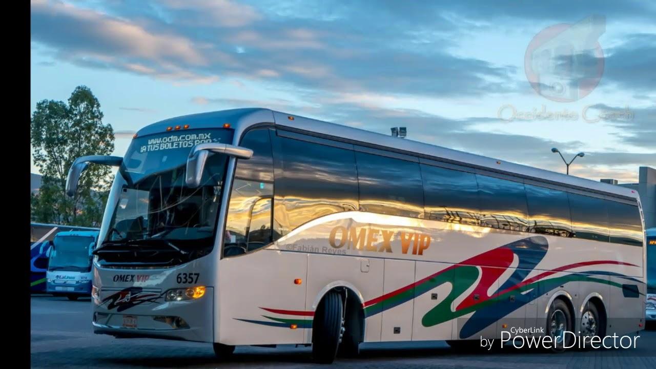 Autobuses omex y omnibus express