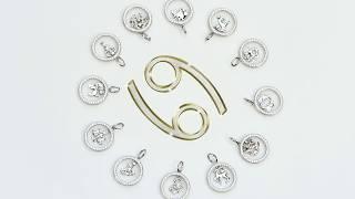 Подвески Знаки Зодиака Срібна Країна