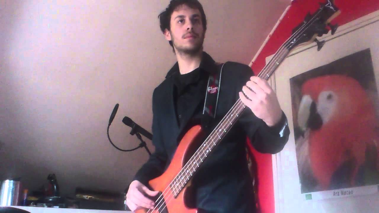 The Wc Experience Natte Pan In De Kast Bass Cover By Tim Hahury