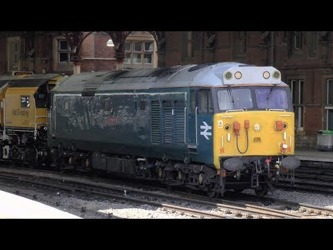 50008 'Thunderer' And Various Freight Movements - July 2017