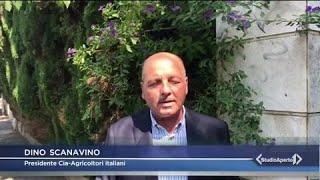 ITALIA 1 STUDIO APERTO - il lockdown e il ruolo chiave dell'agroalimentare. Il commento di Scanavino