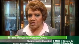 Dip. Emma Margarita Alemán Olvera (pan)