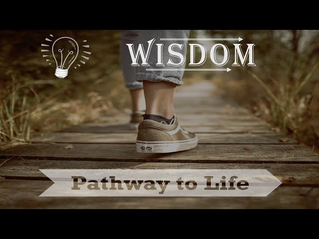 Sunday 8-1-2021: Wisdom Walks