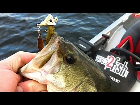 How To Fish Under Spins (Fish Head Spins) For Bass