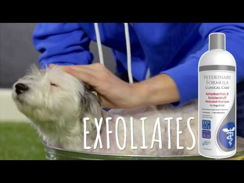 Veterinary Formula Clinical Care Solutions for Dogs and Cats